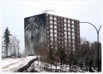 Alcohol addiction information in Thompson, Manitoba, as seen here with its famous wolf mural.